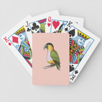 black headed parrot, tony fernandes.tif bicycle playing cards