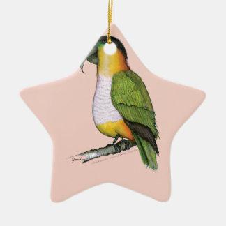 black headed parrot, tony fernandes.tif ceramic ornament