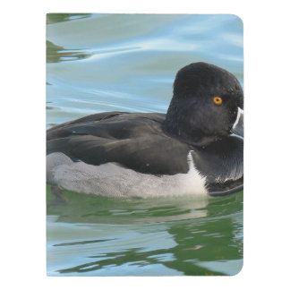 Black Headed Ring-necked sea diving duck Ringbill Extra Large Moleskine Notebook