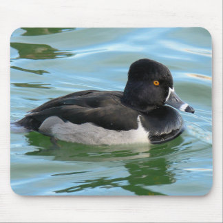 Black Headed Ring-necked sea diving duck Ringbill Mouse Pad