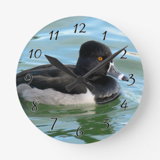Black Headed Ring-necked sea diving duck Ringbill Round Clock
