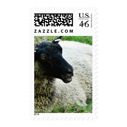 Black Headed Sheep On Grass Postage