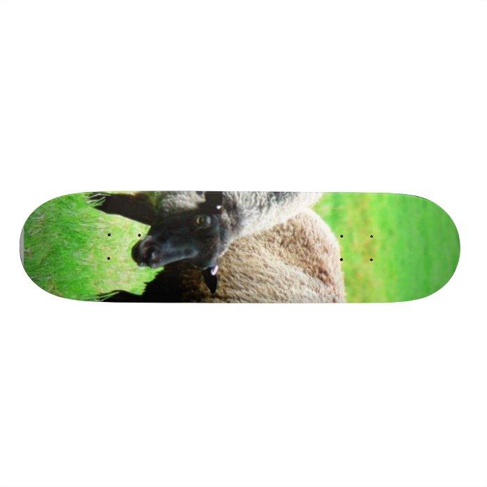 Black Headed Sheep Skateboard Deck