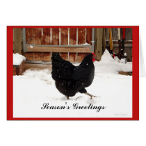 Black hen Strutting In Snow Greeting Cards