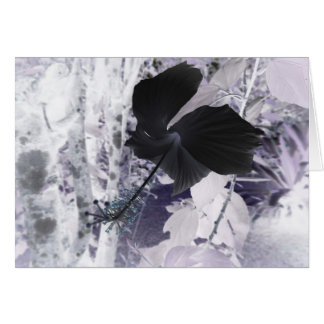Black Hibiscus - Abstract Photography Card