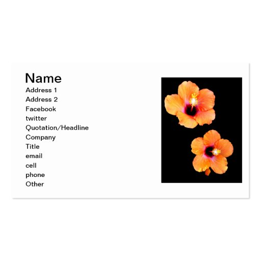 Black Hibiscus The MUSEUM Zazzle Gifts Business Card
