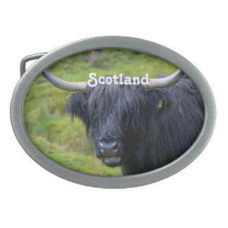 Black Highland Cow Belt Buckles