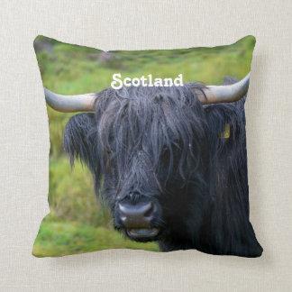 Black Highland Cow Pillows