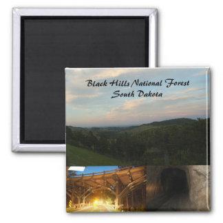 Black Hills National Forest 2 Inch Square Magnet