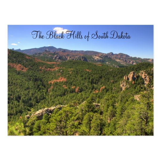Black Hills South Dakota Postcard