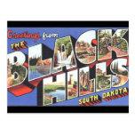 Black Hills South Dakota Vintage Postcard Post Card