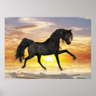 "Black Horse 28"" x 20"", Value Poster (Matte)"