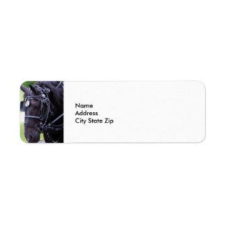 Black Horse 384 Label