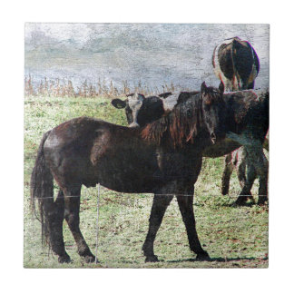 black horse and dairy cattle tile