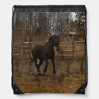 Black Horse at Play Equine photo Backpack