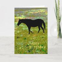 Black horse Birthday Card