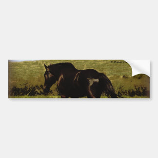 Black Horse Car Bumper Sticker