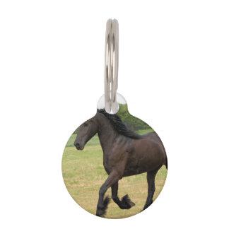 Black Horse Pet Tag