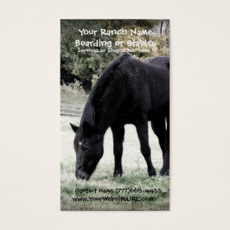 Black Horse Grazing on Rural Farm Pasture Photo Business Card