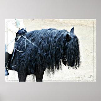 Black Horse Head Poster