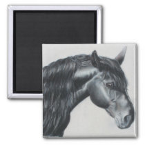 Black horse head stallion magnet