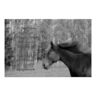 Black Horse & Horse-lover Poem w Equine B&W Photo Poster