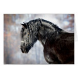 Black horse in forest card