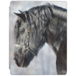 Black horse in forest iPad cover