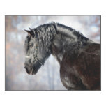 Black horse in forest wood print