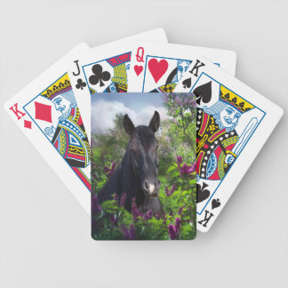 Black horse in lilacs bicycle playing cards