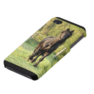 Black  Horse iPhone 4/4S Covers