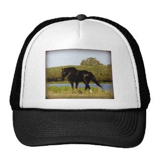 Black Horse Mesh Hats