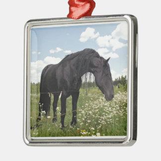 Black Horse Metal Ornament