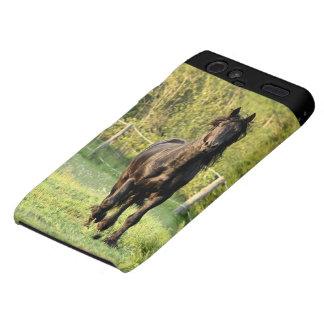 Black  Horse Motorola Droid RAZR Case