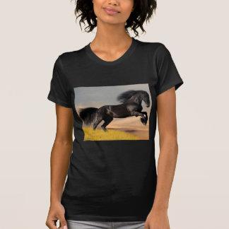black horse on desert shirt