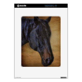 Black Horse Portrait on Rustic Parchment effect Skins For The iPad