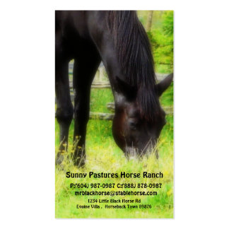 Black Horse Riding Stables Boarding or Farrier Double-Sided Standard Business Cards (Pack Of 100)