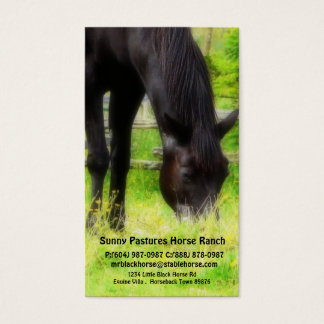Black Horse Riding Stables Boarding or Farrier Business Card