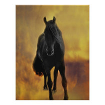 Black Horse Silhouette Flyer