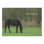 Black Horse standing 5x7 Paper Invitation Card