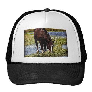Black Horse Trucker Hats