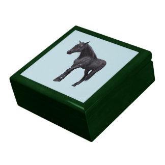 Black Horse with Blue Eyes Trinket Boxes