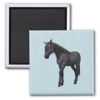 Black Horse with Blue Eyes Magnet