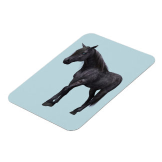 Black Horse with Blue Eyes Rectangle Magnet