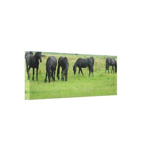 Black Horses Wrapped Canvas Print