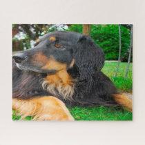 Black Hovawart Dog. Jigsaw Puzzle