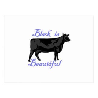 Black Is Beautiful Postcard