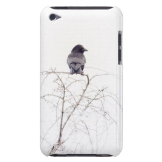 Black Jackdaw Bird Lookout Case-Mate iPod Touch Case