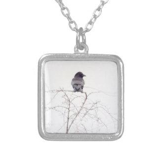 Black Jackdaw Bird Lookout Square Pendant Necklace