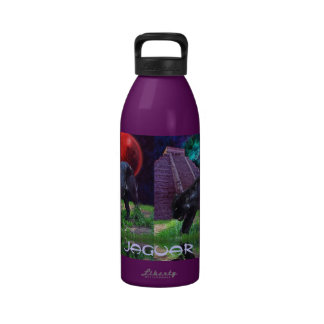 Black Jaguar, Chichen Itza & Eclipse Water Bottle
